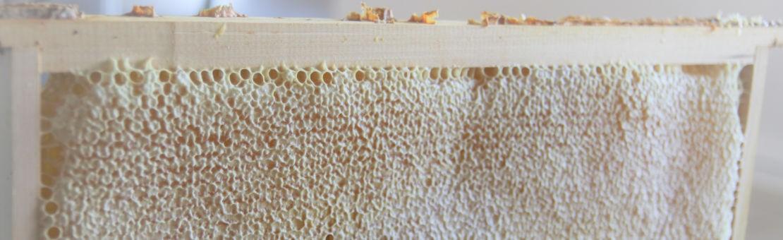 Cadre de Miel